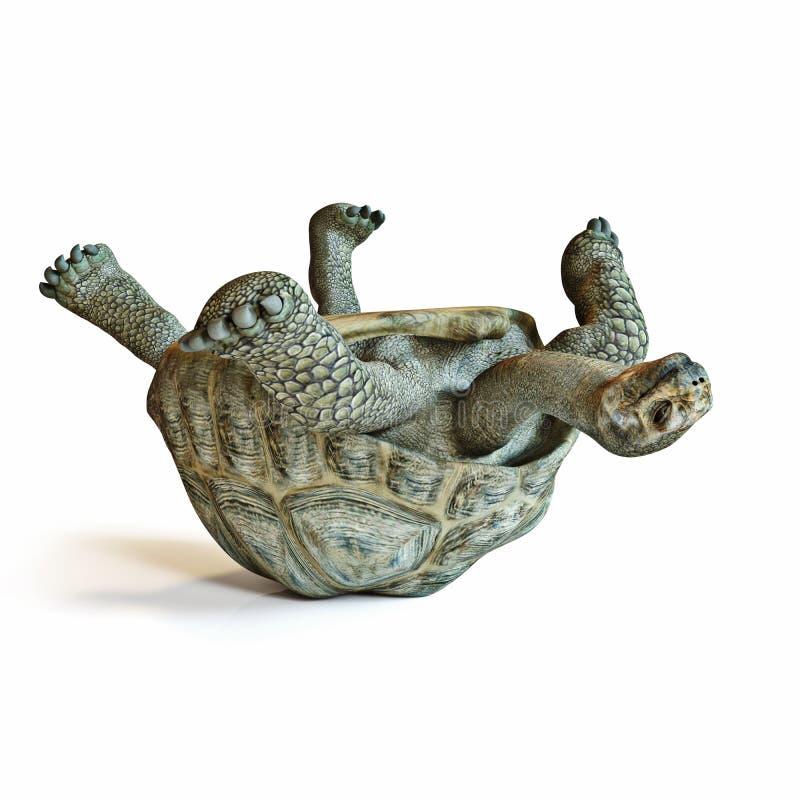 Grote schildpadbovenkant - neer op zijn rug stock illustratie