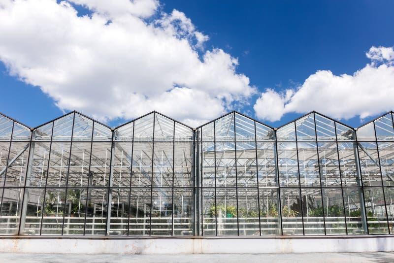 Grote serres voor landbouwproductie onder bewolkte hemel royalty-vrije stock foto