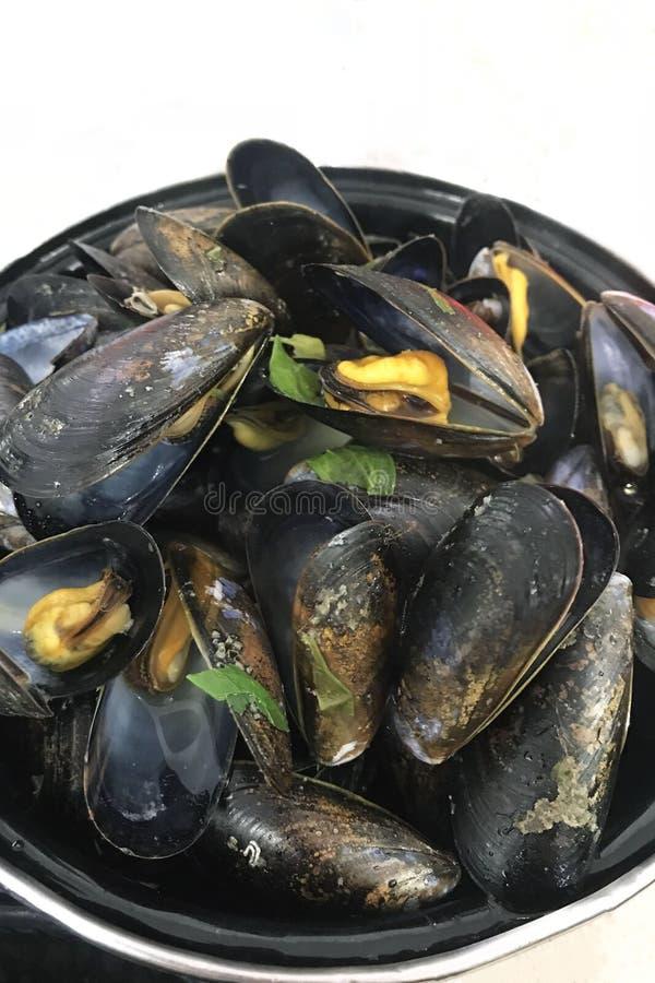 Grote smakelijke mosselen in shells met een kapel en kruiden Heerlijk romantisch voedsel voor diner Zeevruchten stock foto's