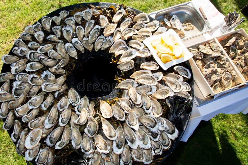 Grote grote smakelijke oesters op de plaat op rondetafel in partij in de baai Frankrijk van Cap Ferret Arcachon stock foto
