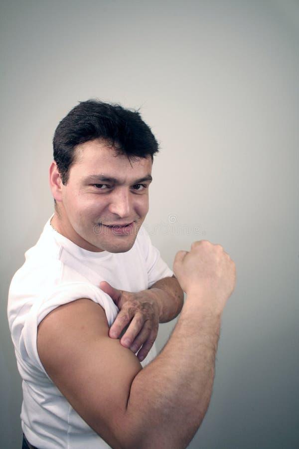 Grote Spieren Stock Afbeelding