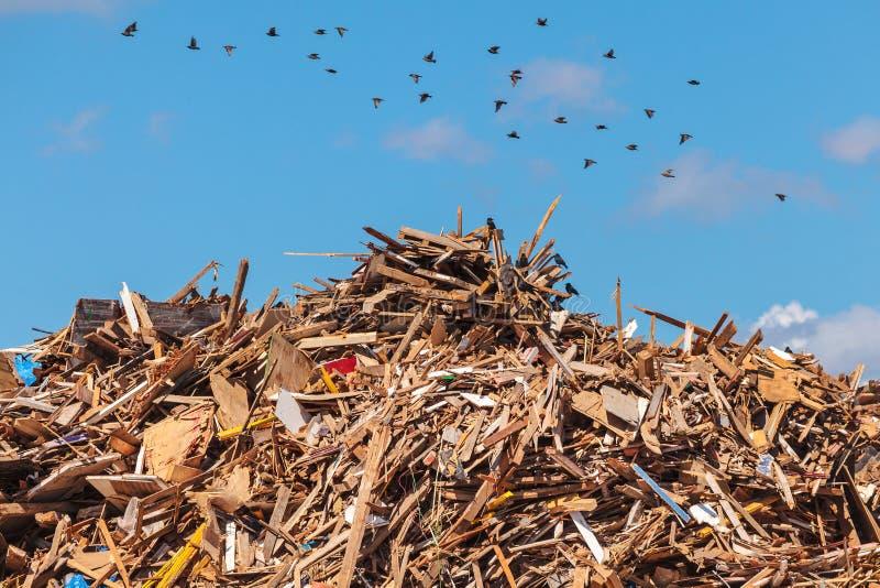 Grote stapel van hout op een huisvuildepot royalty-vrije stock afbeelding
