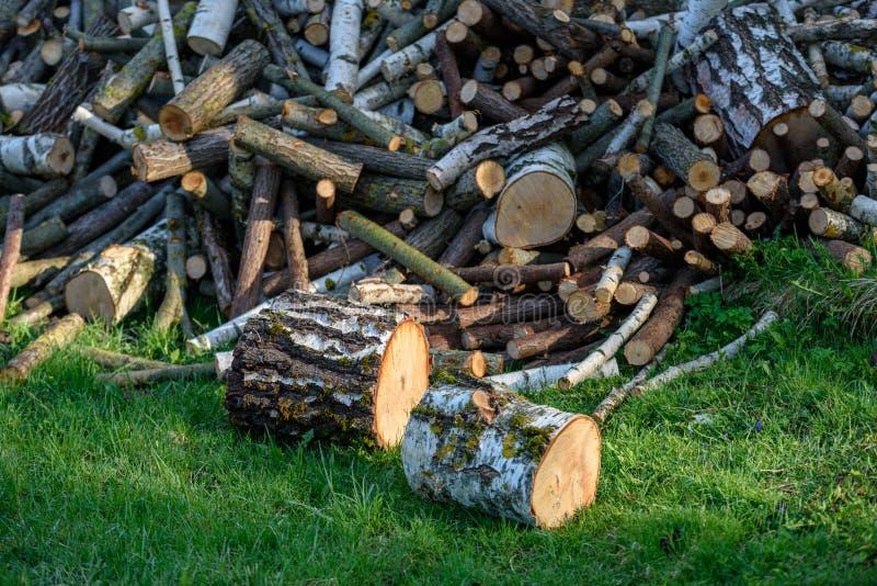 grote stapel van verse brand houten logboeken royalty-vrije stock foto's