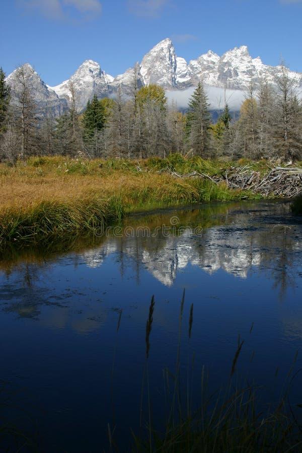 Grote Tetons stock afbeeldingen