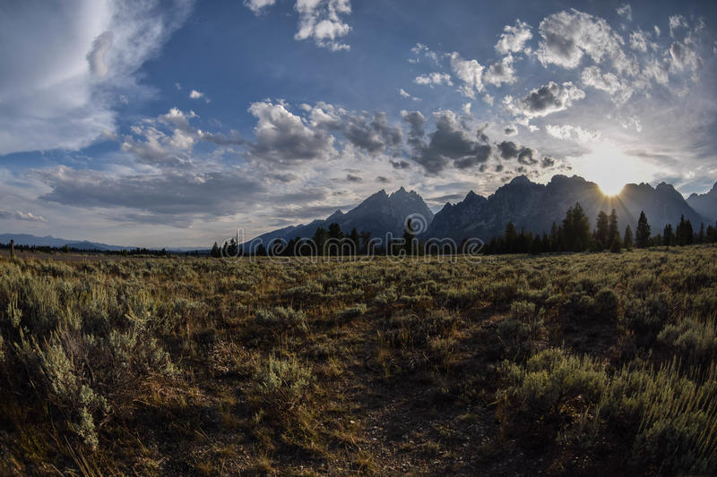 Grote tetons stock foto's
