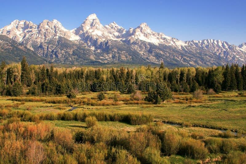 Grote Tetons op Prairie stock afbeelding