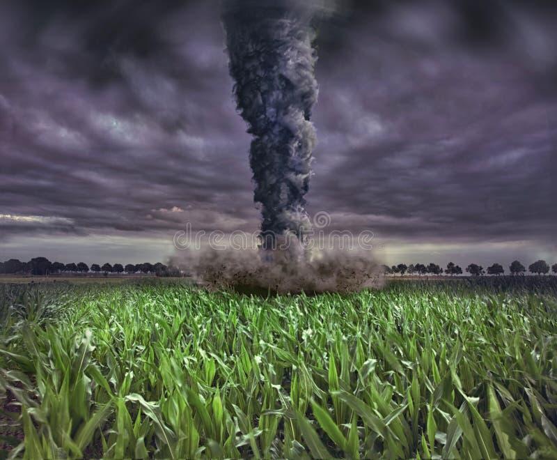 Grote tornado royalty-vrije illustratie