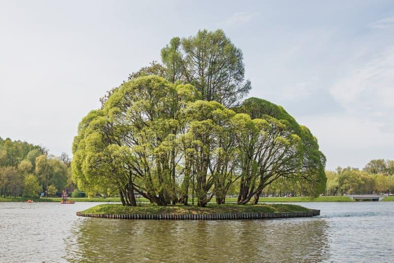 Grote Tsaritsyn-vijver op het landgoed Tsaritsyno Zuidelijk district moskou Russische Federatie stock foto's