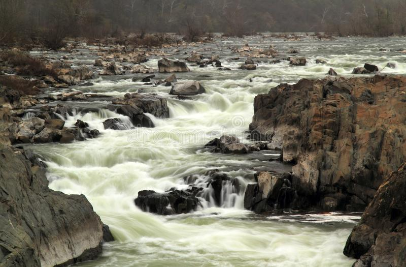 Grote val van Potomac royalty-vrije stock foto's