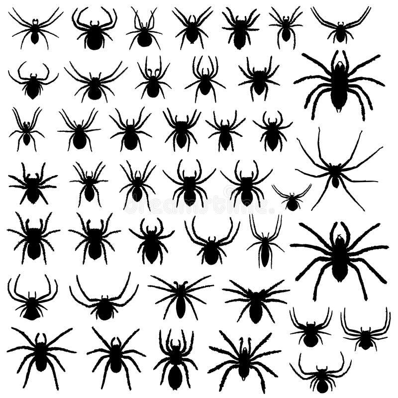 Grote vectorinzameling van spinnen vector illustratie