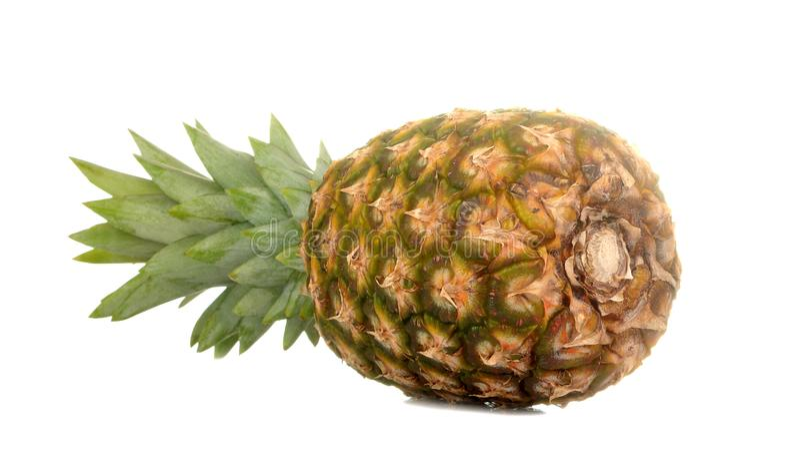 Grote verse rijpe fruitananas op een wit ge?soleerde achtergrond Fruit, de zomer stock fotografie