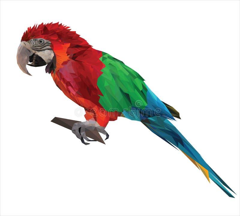 Grote vogel, de kleurrijke zitting van de papegaaiara op een brunch vector illustratie