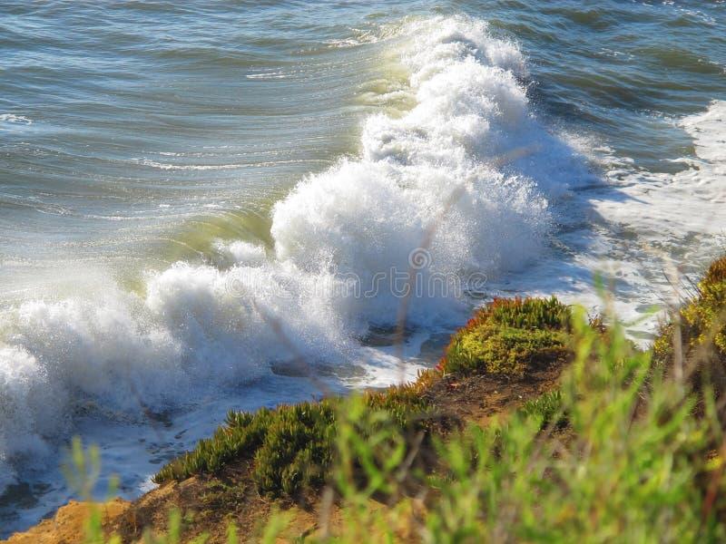 Grote Vreedzame Oceaangolven die in Kust mompelen stock foto