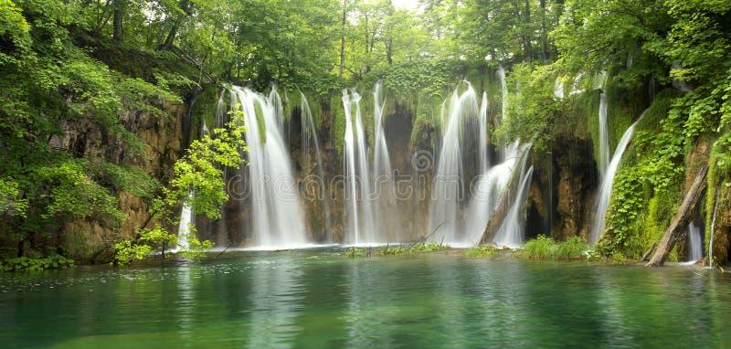 Grote waterval in het bos stock foto's