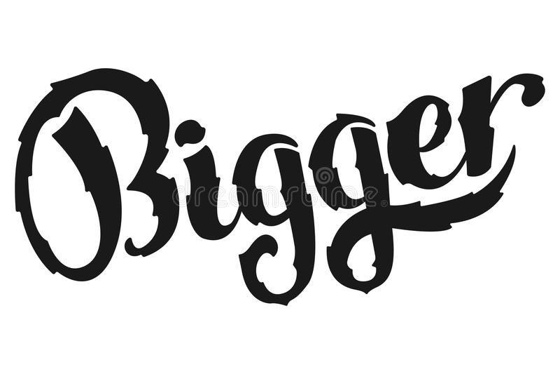 groter Het Inspirational sport zeggen Retro Etiket met Kalligrafische Elementen vector illustratie