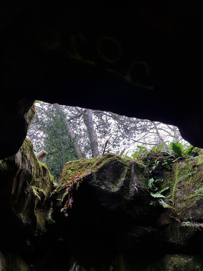grotta fotografering för bildbyråer