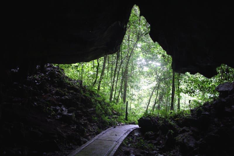 grottaingångsexponering som skjutas long royaltyfri bild