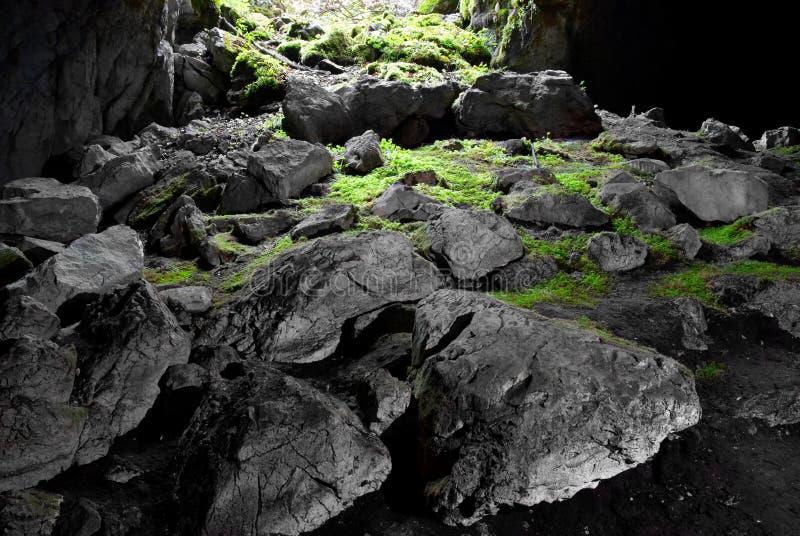 grottautgång royaltyfri foto