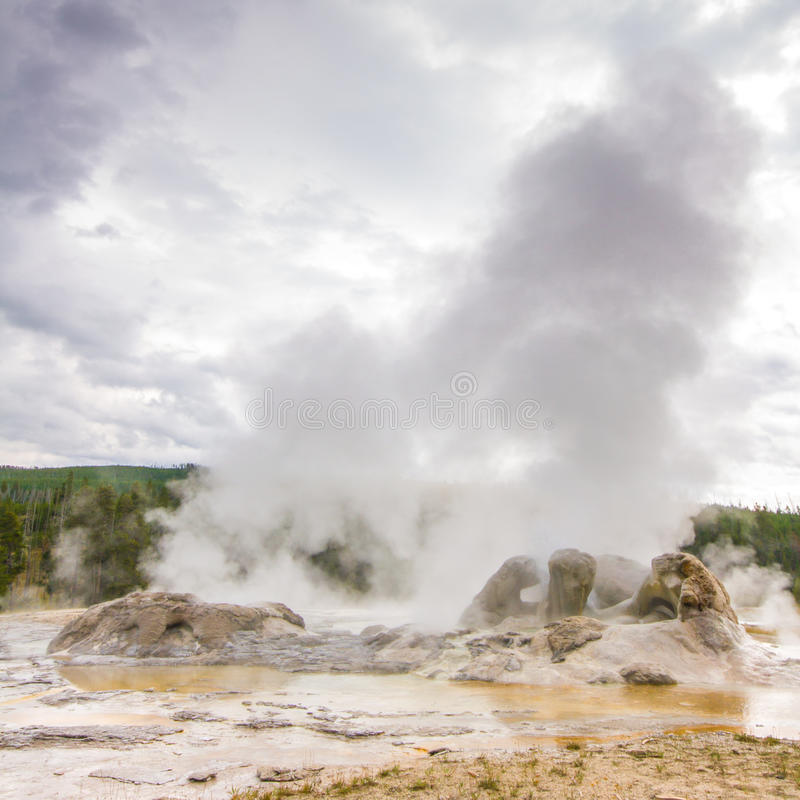 Grotto Geyser. Landscape Grotto Geyser located in the Old Faithful area of Yellowstone National Park, Wyoming royalty free stock image