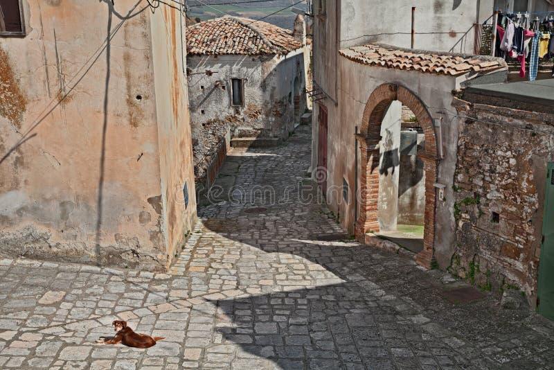 Grottole, Matera, Basilicata, Itália: aleia antiga de uma das vilas as mais velhas na região fotos de stock