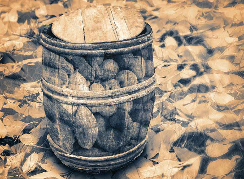 Barrel of vegetables on the background of autumn leaves. Double exposure. royalty free stock photos