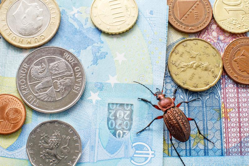 Ground beetle on the bill twenty euros, small coins of Europe. Concept: money beetle stock photo