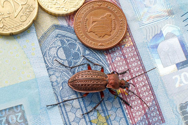 Ground beetle on the bill twenty euros, small coins of Europe. Concept: money beetle royalty free stock photo