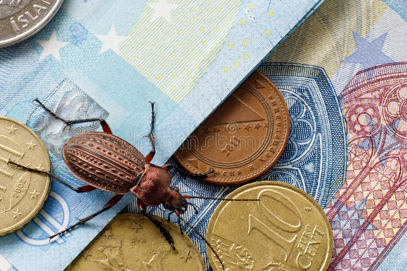 Ground beetle on the bill twenty euros, small coins of Europe. Concept: money beetle stock photography
