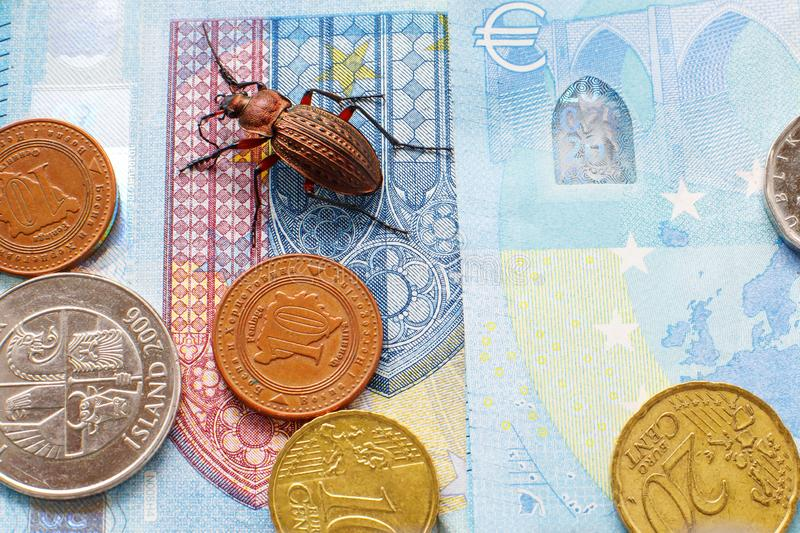 Ground beetle on the bill twenty euros, small coins of Europe royalty free stock photos