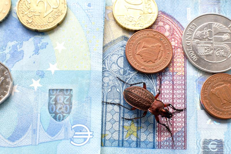 Ground beetle on the bill twenty euros, small coins of Europe stock photos