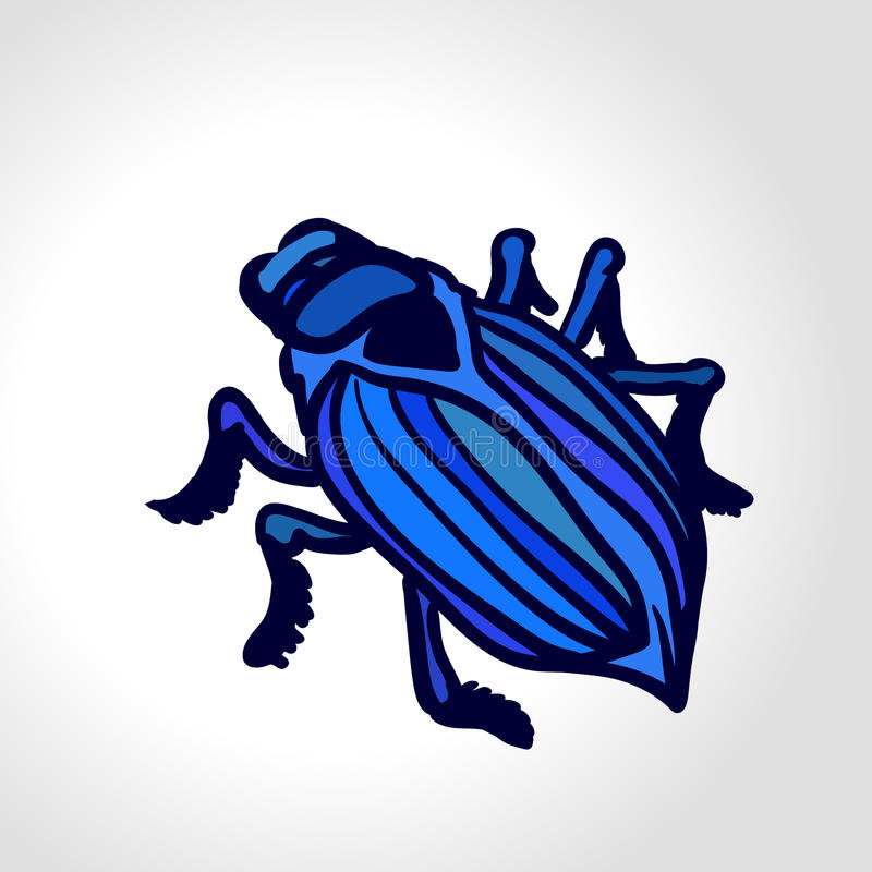 Ground beetle. Colorful vector drawing of big blue beetle. stock illustration