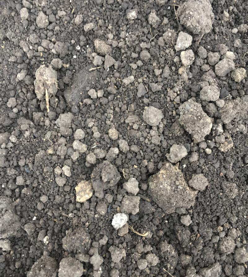 ground black soil. Close up natural background royalty free stock image