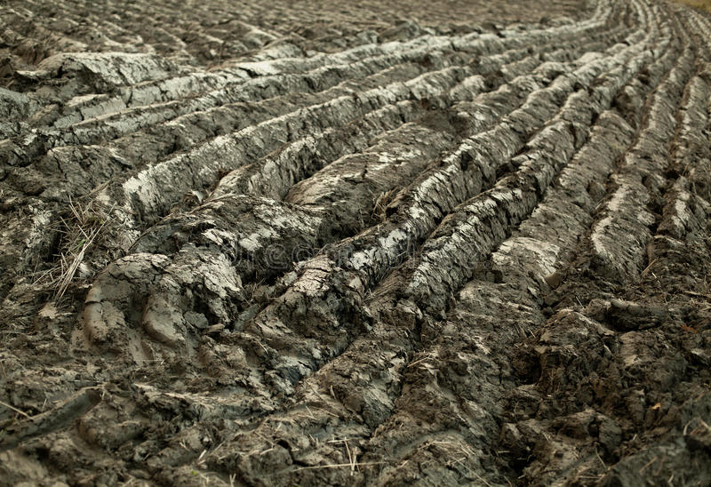 Download Ground texture stock photo. Image of pattern, abstract - 22652830