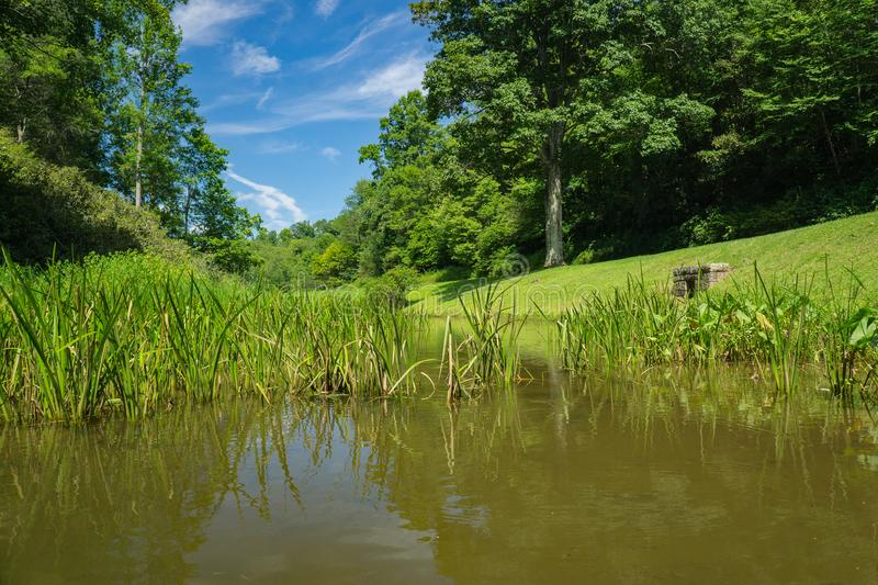 A Ground View of Rakes Mill Pond stock images