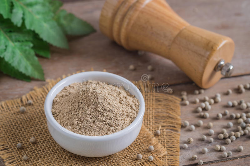 Ground white pepper in bowl and pepper shaker stock photos