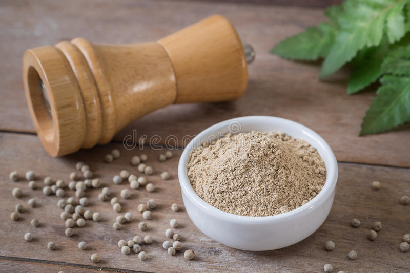 Ground white pepper in bowl and pepper shaker. Ground white pepper in white bowl and pepper shaker royalty free stock image