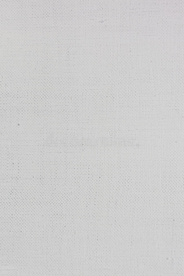 Free Grounded Canvas Fabric Texture Royalty Free Stock Photography - 21953507