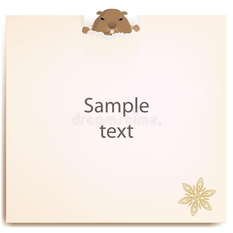 Groundhog behind a paper stock photos