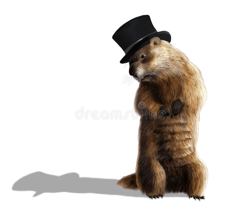 Groundhog. Digital illustration of a groundhog looking at his shadow