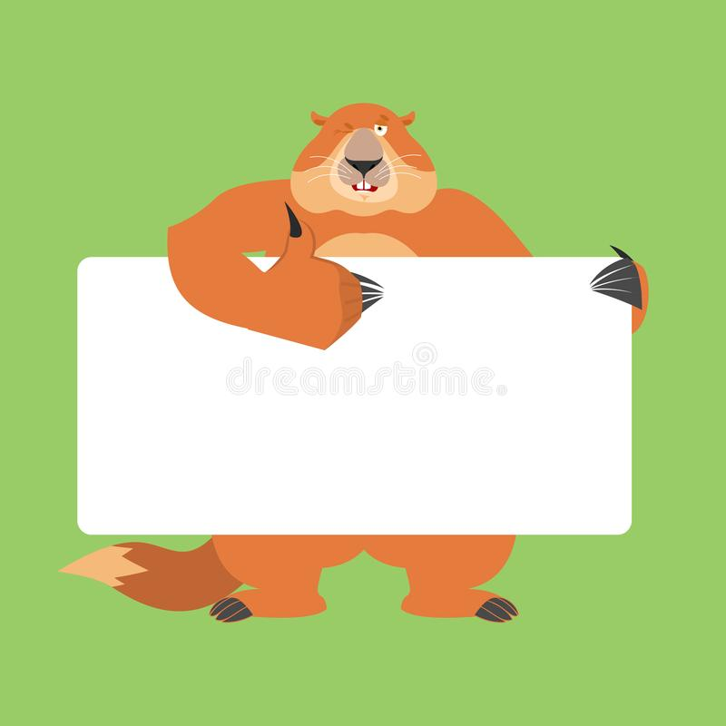 Groundhog holding banner blank. Woodchuck and white blank. Marmot thumb up and winks joyful emotion. place for text. Groundhog da vector illustration