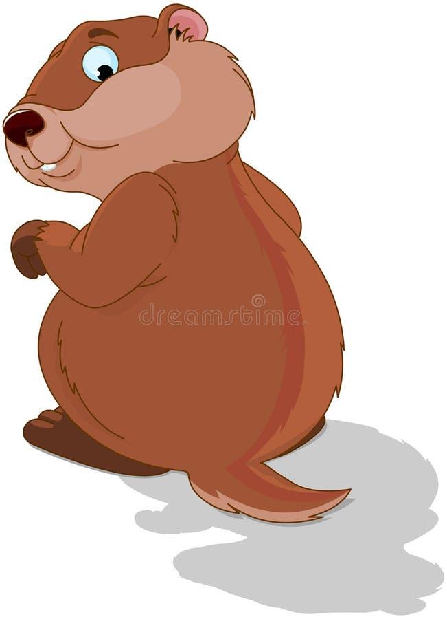 Groundhog vector illustration