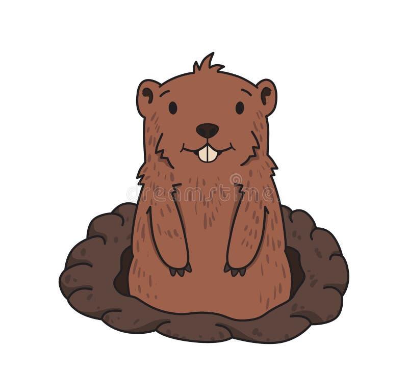 Groundhog lindo que mira hacia fuera de la madriguera en el fondo blanco Día de Groundhog Línea ejemplo del vector Historieta col libre illustration