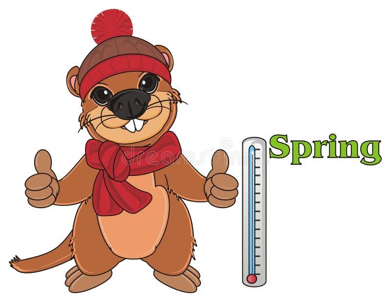 Groundhog sagen - es ` s ein Frühling vektor abbildung