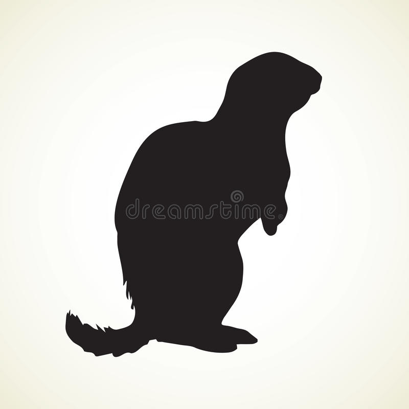 download groundhog vector illustration stock vector image 95849643