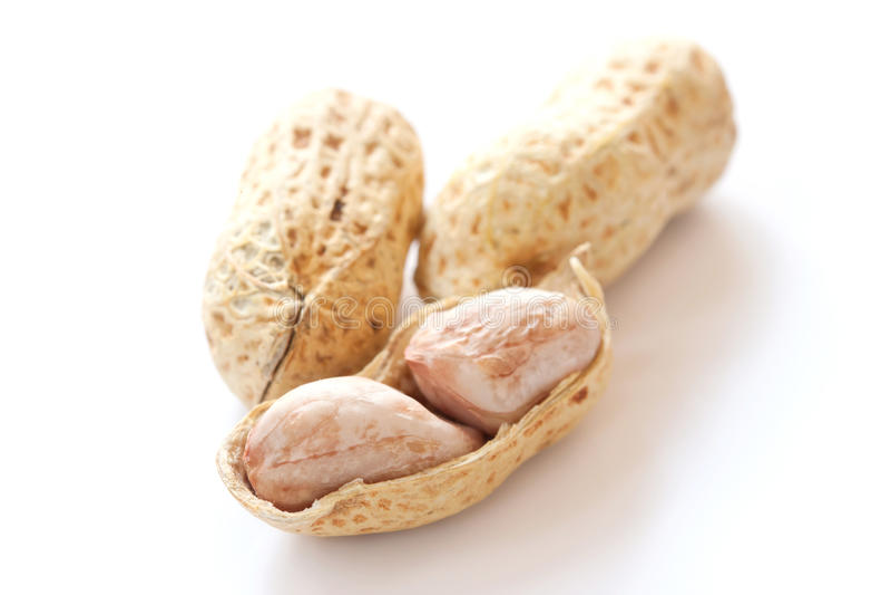 Groundnut. On white background royalty free stock photos