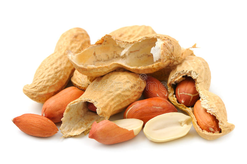 Groundnut. On a white background royalty free stock photos