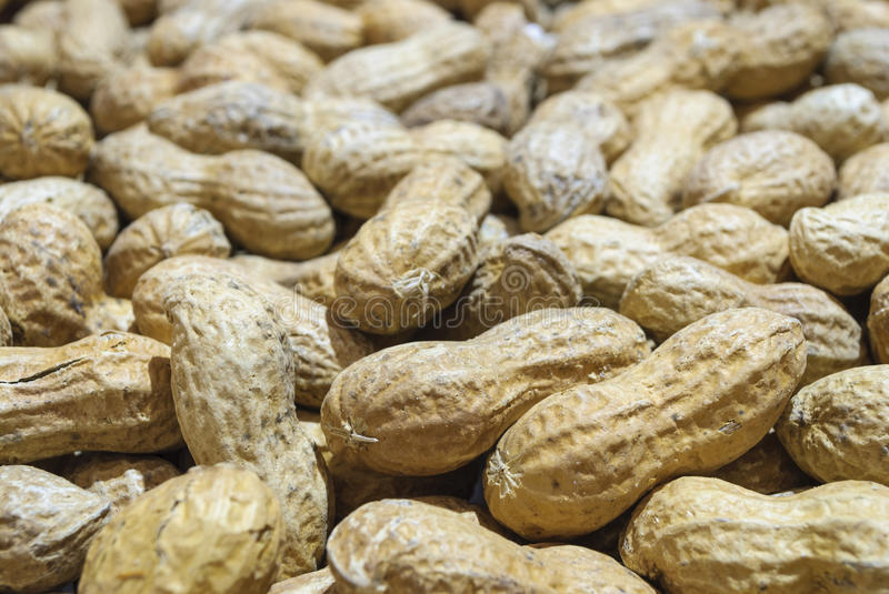 Groundnut. Close-up with groundnut (dry peanuts royalty free stock images