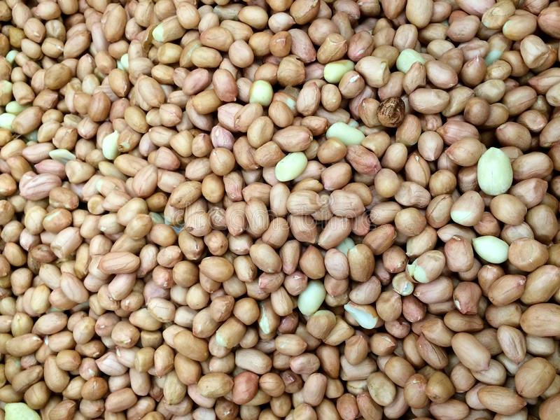 Groundnut. In food store from Chiangmai Thailand stock photos