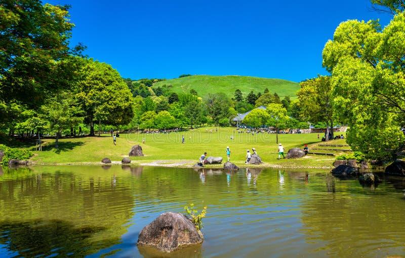 Grounds of Nara Park in Kansai Region - Japan. Grounds of Nara Park in Kansai Region of Japan stock photography