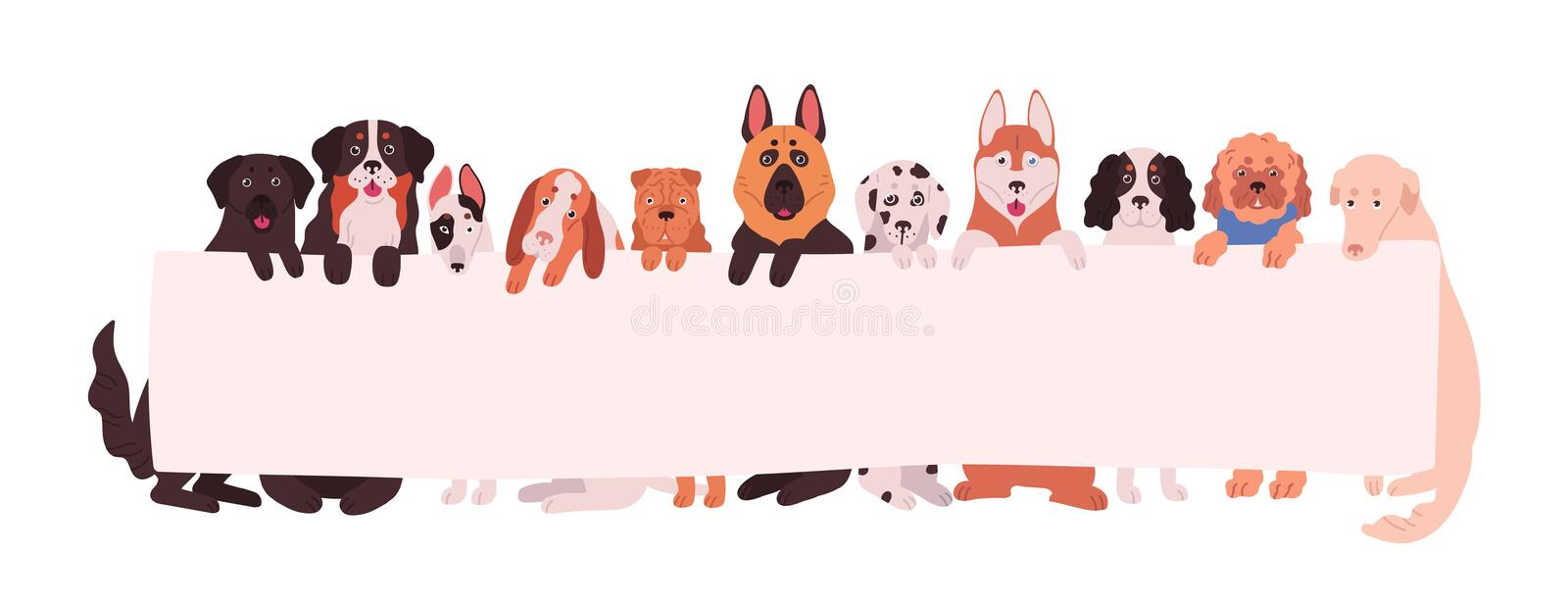 Group of adorable dogs of different breeds holding empty banner with place for text. Amusing domestic animals or pets. With placard isolated on white background stock illustration